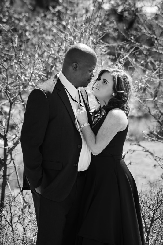 gorgeous denver engagement photos