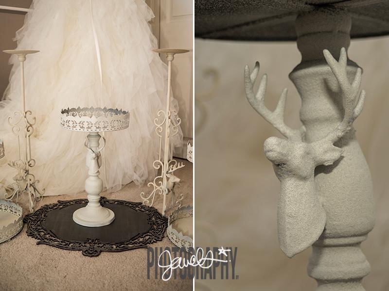 Denver Bridal Photographers