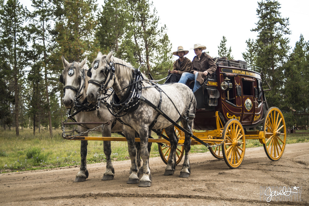 stagecoach wedding whistling elk ranch
