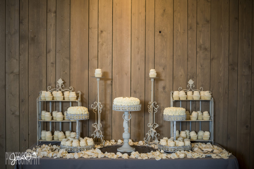 rustic denver wedding cake cupcakes decor